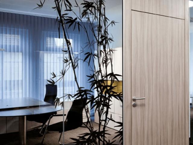 Glastrennwand mit Bambuspflanze